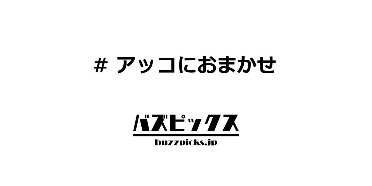 に おまかせ 記者 アッコ 斎藤