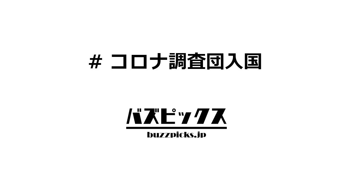 コロナ調査団入国