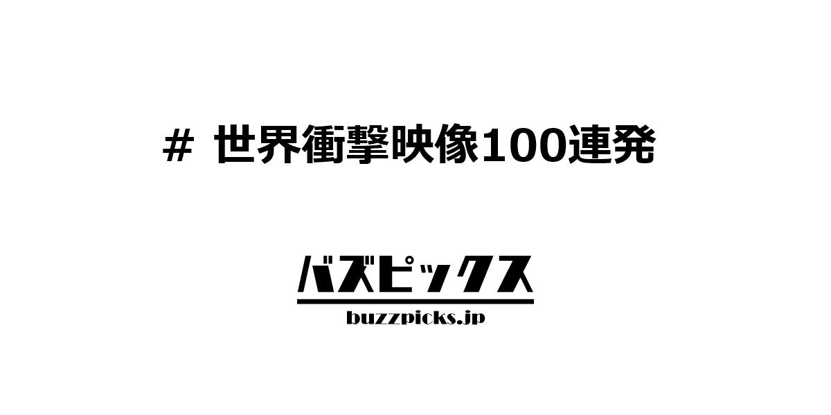 世界衝撃映像100連発