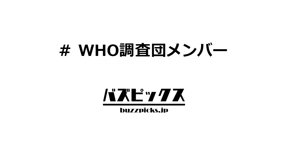Who調査団メンバー