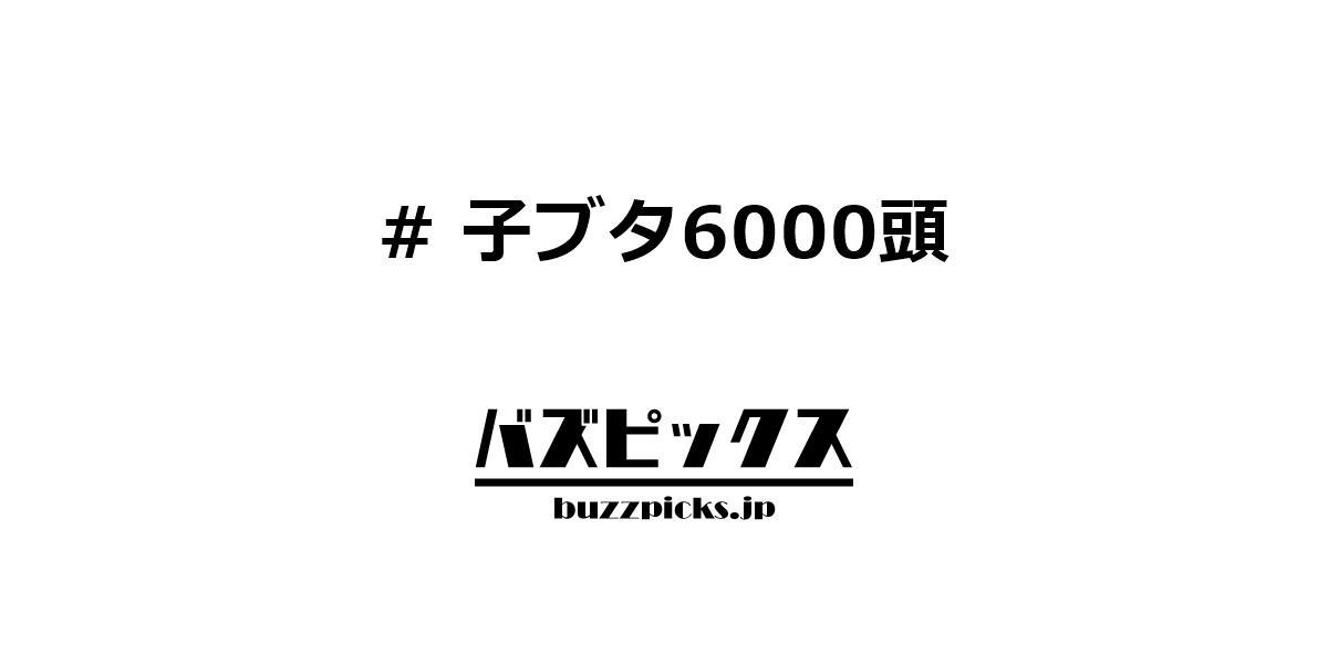 子ブタ6000頭
